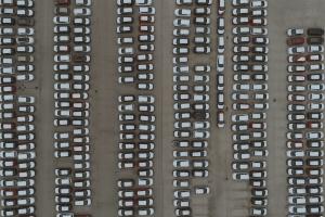 autolevi